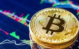 Giá Bitcoin vượt mốc 10.000 USD, nhà đầu tư phấn khích