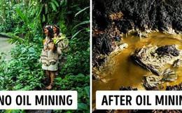 Những thổ dân Amazon vừa chặn được tập đoàn dầu mỏ khổng lồ đến phá rừng: Nguồn cảm hứng bảo vệ môi trường lan tỏa khắp Nam Mỹ