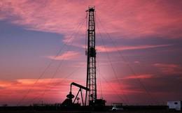 Giá dầu tăng hơn 9% trong tháng 6/2019