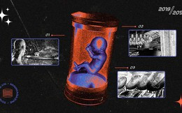 Đọc cuối tuần: Điều gì sẽ xảy ra vào năm 2051, một khi phụ nữ không còn phải mang thai?