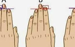 So sánh độ dài ngón tay áp út với ngón trỏ, biết ngay ai làm thuê, ai có tướng làm lãnh đạo