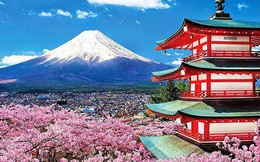 Vì sao 8 công ty Việt bị Đại sứ quán Nhật từ chối cấp visa đoàn?