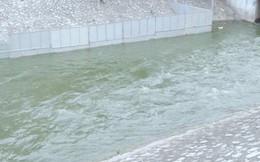 Hà Nội mở cửa xả Hồ Tây dẫn nước vào sông Tô Lịch: Nước đã xanh hơn, mùi hôi thối giảm hẳn