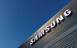 Samsung tích cực đầu tư nghiên cứu chip, vật liệu màn hình nhằm đối phó với lệnh cấm xuất khẩu của Nhật Bản