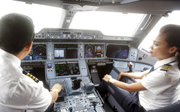 Báo Nhật viết gì về Vinpearl Air?