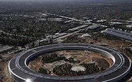 Trụ sở phi thuyền Apple Park có gì đặc biệt và Apple đã mất bao nhiêu tiền để xây dựng tòa nhà này?