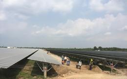 Bộ Công Thương loay hoay xử lý đầu ra cho điện gió, điện mặt trời