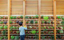 """Ngôi nhà mơ ước với những cánh cửa lùa """"ôm trọn"""" khu vườn đứng xanh tươi bên ngoài"""