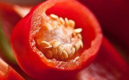 Nếu bạn thuộc một trong những trường hợp sau, tuyệt đối đừng ăn ớt kẻo gây hại sức khỏe
