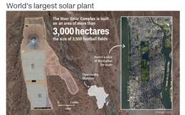 [Ảnh] Toàn cảnh 'cánh đồng' điện mặt trời tập trung lớn nhất thế giới