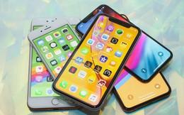 Bị người Việt hắt hủi ra rìa nhưng mẫu iPhone này lại bán đắt như tôm tươi tại quê nhà Apple