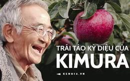 Kiên trì suốt 10 năm, người đàn ông từng bị coi là ngốc nghếch, cố chấp đã tạo ra một giống táo diệu kỳ cho nước Nhật