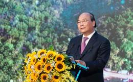 Thủ tướng: Không được 'bê tông hóa' Phú Quốc