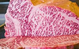 Vì sao thịt bò Wagyu có giá đắt đỏ?