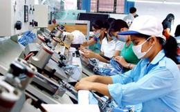 """Thấy gì từ những con số ấn tượng về doanh nghiệp Việt """"go global""""?"""