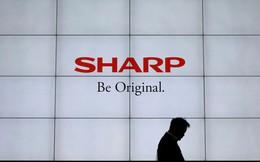Sharp lên kế hoạch xây nhà máy ở Việt Nam