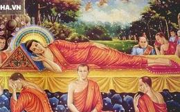Trước khi tạ thế, Đức Phật để lại 1 câu nói giúp người người được giải thoát