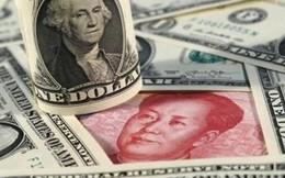 Việt Nam chịu áp lực gì giữa vòng xoáy của đồng USD và NDT?