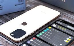 Chủ tịch của SoftBank vô tình tiết lộ ngày ra mắt iPhone 11