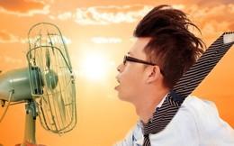 Giải ngố: Khi nào bật quạt còn khiến bạn thấy nóng hơn, tăng nguy cơ sốc nhiệt?