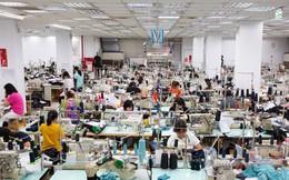 """Điều """"kỳ lạ"""" về năng suất lao động Việt Nam: Khu vực Nhà nước đứng đầu, tiếp đến là FDI, còn tư nhân là bét bảng"""
