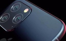 Lộ thêm nhiều thông tin về iPhone 11 từ một nhân viên Foxconn: thêm màu xanh lá cây tối, phủ lớp mờ chống bám vân tay