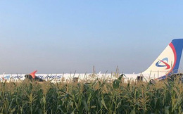 Máy bay A321 trượt trên cánh đồng ngô, 230 người thoát chết thần kỳ