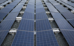 Walmart kiện Tesla sau khi các tấm pin mặt trời bắt lửa tại các cửa hàng