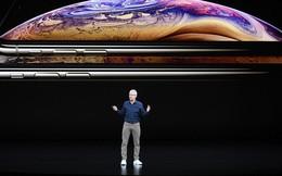 Tất tật thông tin về bộ 3 iPhone, iPad, Mac sắp ra mắt của Apple: tập trung vào camera, chỉnh sửa video ngay trên điện thoại, copy tính năng sạc ngược của Samsung