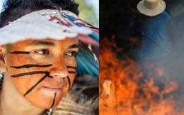"""Thảm cảnh của thổ dân trước vụ cháy rừng Amazon tàn khốc nhất lịch sử: """"Chúng tôi đã khóc khi dập lửa, nhiều gia đình mất hết tất cả"""""""
