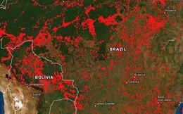 Cháy rừng Amazon tàn phá trái đất như vũ khí huỷ diệt hàng loạt