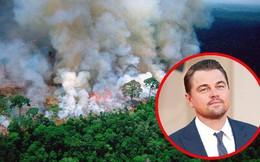 """Dàn sao """"nhầm nhọt"""" đăng status về cháy rừng Amazon: Ronaldo chọn sai ảnh, Dicaprio và Madonna lấy nguồn từ vài chục năm trước"""