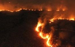 Quân đội Brazil chữa cháy rừng Amazon như thế nào?
