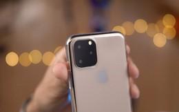 Video trên tay (không chính thức) iPhone 11 và iPhone 11 Pro
