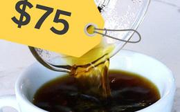 """Đằng sau cái giá 41 triệu đồng/kg của """"vàng đen"""" Elida Geisha: Loại cafe cực khó chăm, chỉ ngon nếu trồng ở một loại đất đặc biệt"""