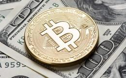 Giá Bitcoin leo thang, sắp chạm 11.000 USD?