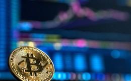 Bitcoin thất bại hay đang dần trở nên mạnh mẽ?