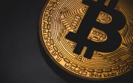 Giá Bitcoin vẫn lao dốc