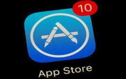 Lo ngại bị điều tra chống độc quyền, Apple hạ bậc chính các ứng dụng của mình khi tìm kiếm trên App Store
