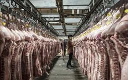 Trung Quốc muốn mua gom thịt lợn để ngăn giá tăng sốc trước thềm Quốc khánh