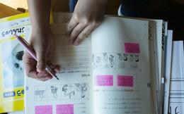 Thiếu lao động trầm trọng, Nhật Bản thử nghiệm chính sách nhập cư táo bạo