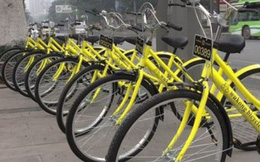 Hà Nội có thể học gì từ Trung Quốc và nước Anh khi phát triển đề án xe đạp công cộng?