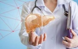 """Cơ thể nhiễm độc thì gan bị tổn thương đầu tiên, hãy ghi nhớ 5 việc để """"nuôi"""" gan an toàn"""