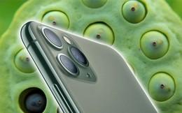 Bị chê bai hết lời nhưng cụm camera trên mặt lưng iPhone 11 chính là yếu tố giúp gia tăng doanh số