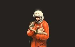 Góc tối của khoa học vũ trụ: Laika - chú chó duy nhất bị trôi dạt ngoài không gian