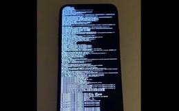 Một lập trình viên đã jailbreak thành công iOS 13.1.1 vừa ra mắt, bằng lỗ hổng bảo mật không thể vá của Apple