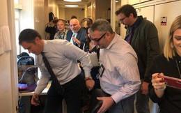 Rượt đuổi truy bắt chuột trong Nhà Trắng