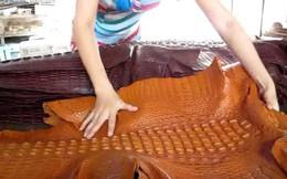 Vì sao phụ kiện bằng da cá sấu luôn đắt đỏ?