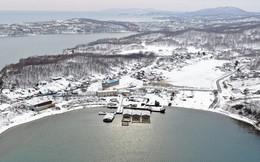 """Kẻ thù tàng hình """"ăn mòn"""" của Nga hàng tỉ USD: Một nửa diện tích đất nước bị ảnh hưởng, thiệt hại không tưởng"""
