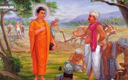 Đức Phật nói có 4 kiểu người sợ chết, đa phần chúng ta là kiểu thứ nhất